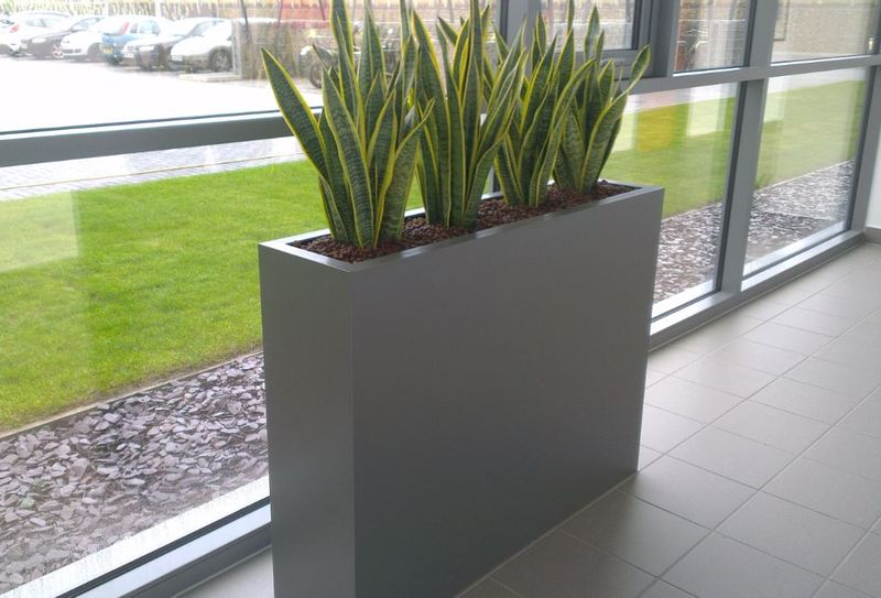 Narrow rectangular plant displays are space saving & ideal for office corridors