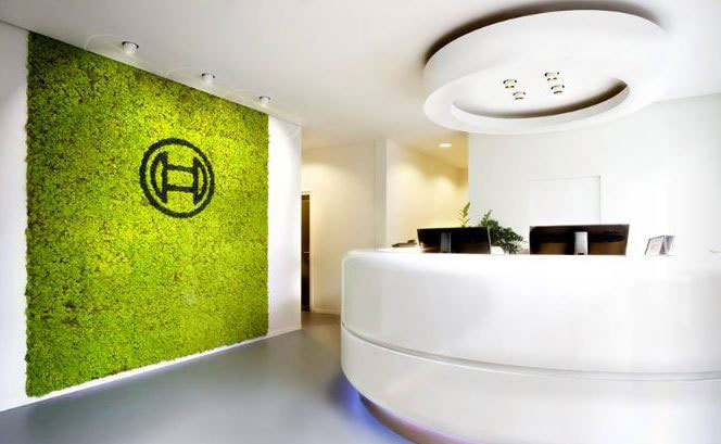 Moss wall in a main Reception area incorporating a company logo