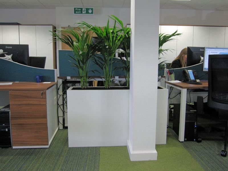 Tall rectangular Barrier Plant Displays is a perfect fit to screen off this office desk