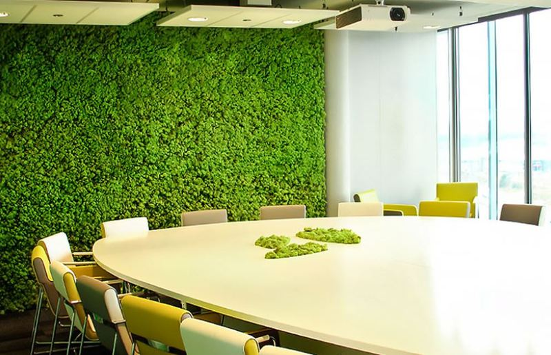 Green Moss walls are cost effective & low maintenance