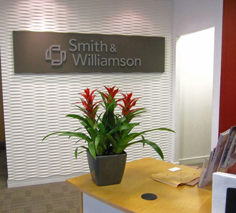 Red Guzzmania plants in a charcoal grey pot, perfectly match the surrondings of this office Reception