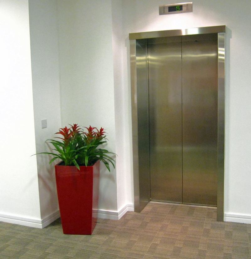 Red plants in a red container add colour to a white walled office lift lobby