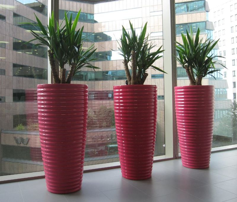 Funky Spin containers in Hot Pink look superb in this office breakout area