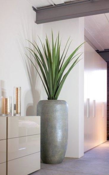 Cement Cigar Planters for office interiors