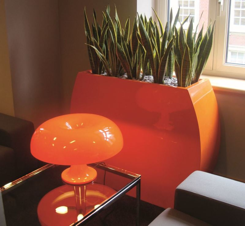 Curvy Bridget Barrier plant container looks striking on this Derby office waiting area