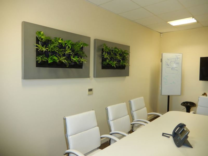 mini Green Walls with live plants for Milton Keynes offices