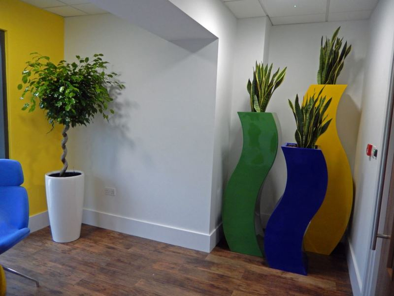 Cool & Stylish Plants for this Leamington Spa office Breakout area