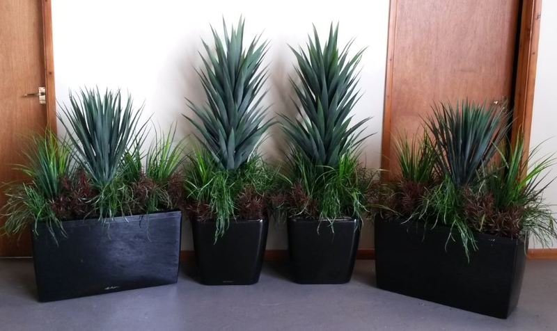 Artificial Plants for Mercedes Benz Car Showroom