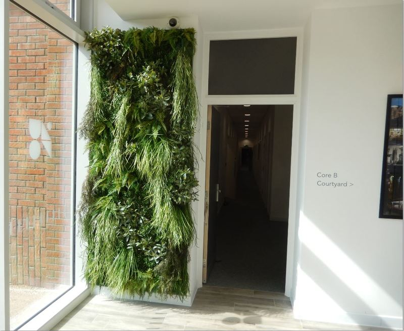 Artificial Green Walls supplied & installed in Manchester, Leeds & Liverpool