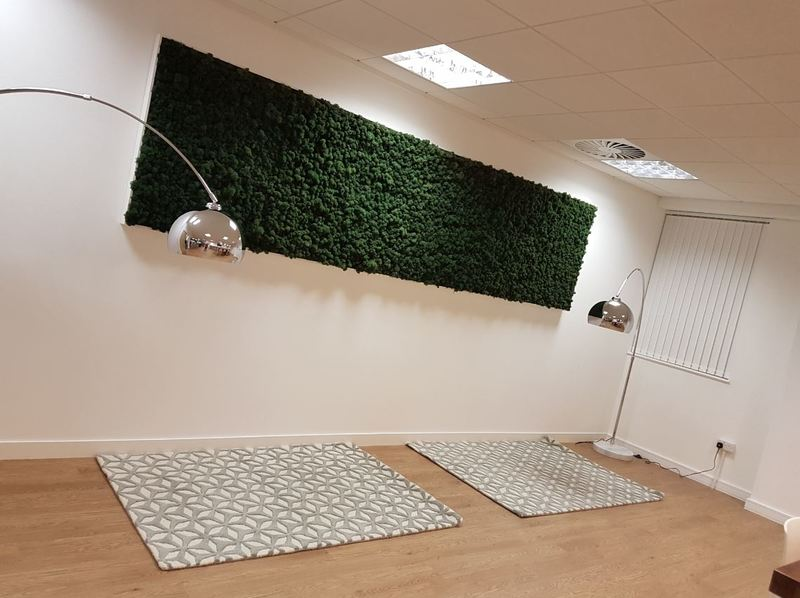 Real Preserved Reindeer Moss Wall for this Office Breakout area