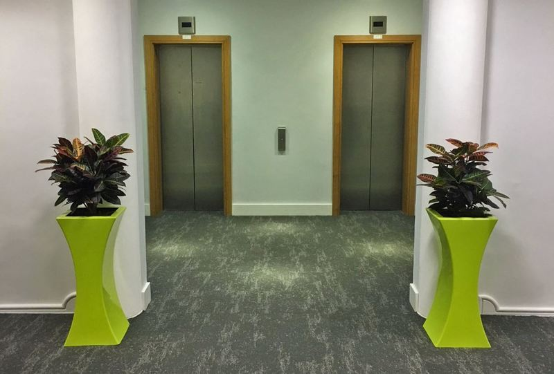A pair of curvy Lime Green plant displays for this office lift lobby