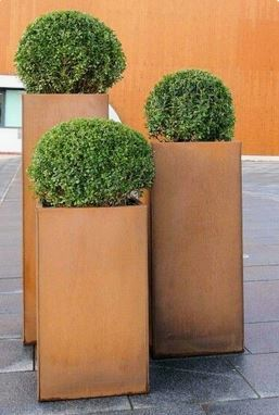 Birmingham office garden Buxus Corten steel plant displays