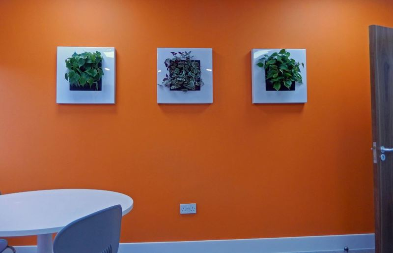 Wall mounted interior landscaping for greener walls