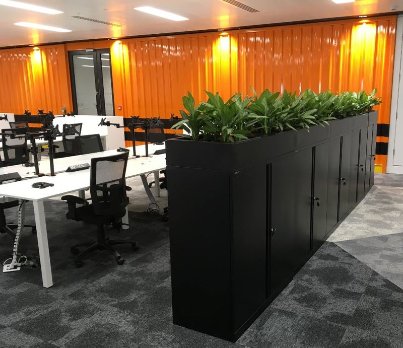 Plants for the office Cabinet top displays