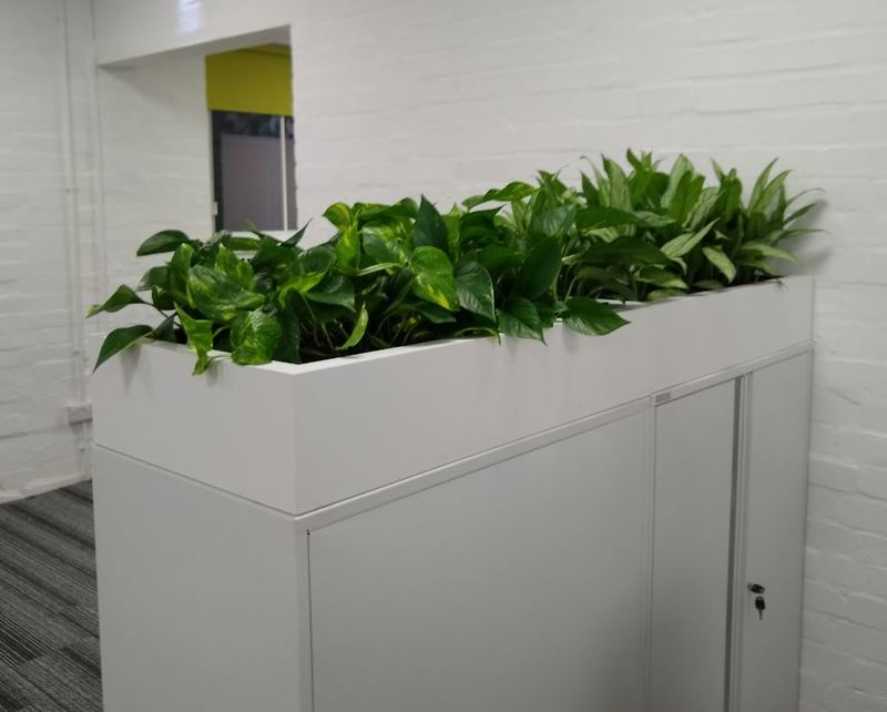 Cabinet Toppers interior landscaping plants for this Nottingham office
