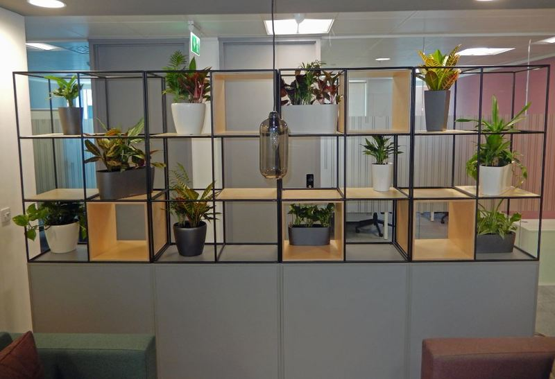 Plant on shelves interior landscaping in Nottingham