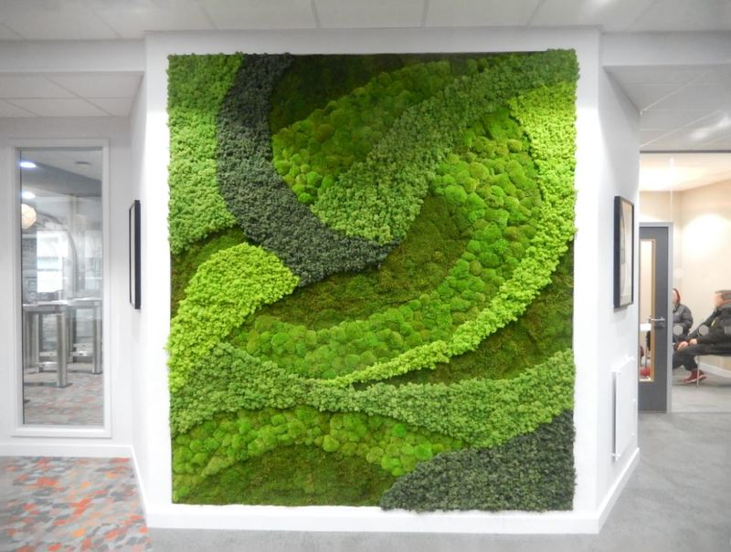 Moss Wall Art Wow Factor for this Birmingham building Reception
