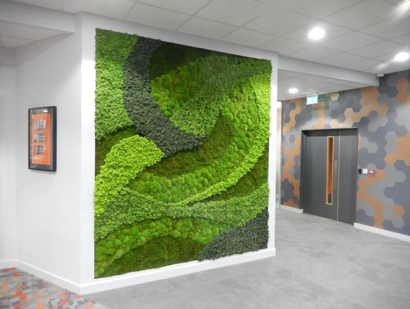 Moss Wall Art Design for this Birmingham office Reception