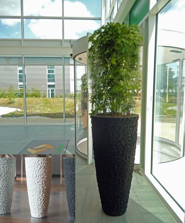 Extra Large Lava Plant pot in this Cannock HQ office Reception