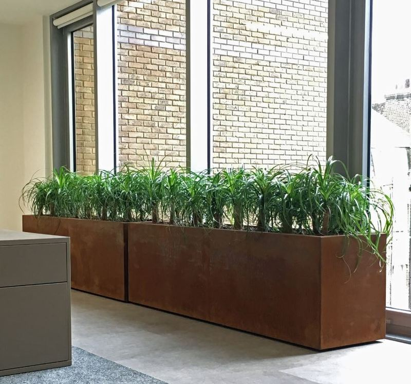 Birmingham office with large Corten Steel Rectangular Plant Displays
