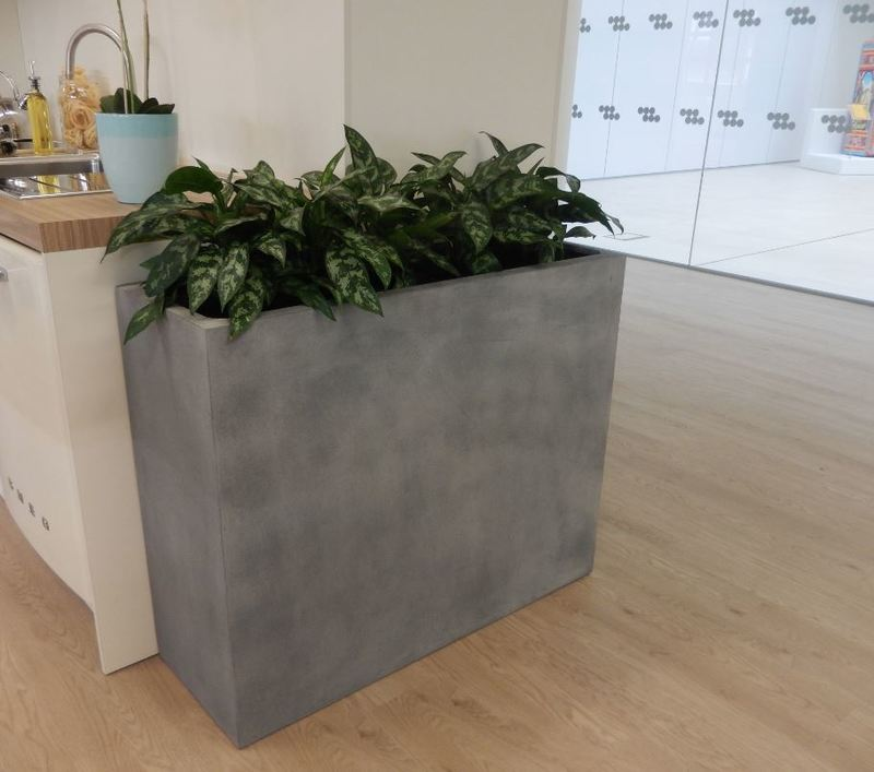 Rectangular Fibrestone Barrier display in office showroom with aglaonema maria plants