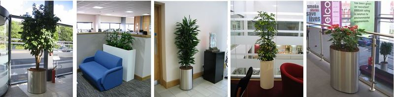 Plants for West Midlands Fire Sevice Office HQ