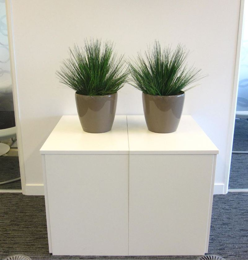 Artificial grass plant displays for oxfordshire offices