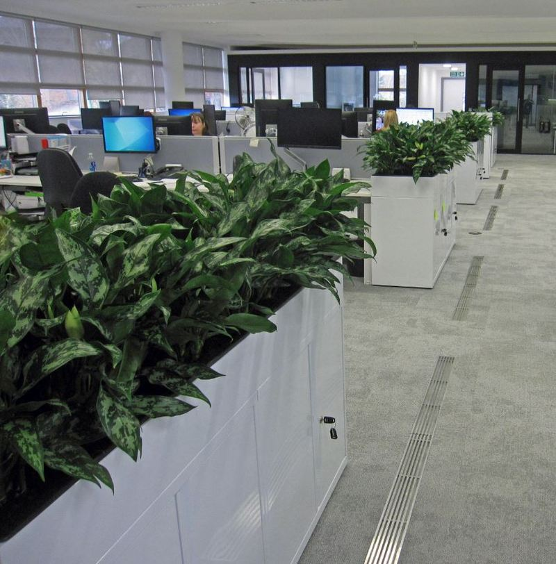 Highly visible space saving cabinet planters were used in this Abingdon office