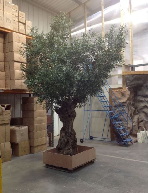 Artificial olive tree awaiting despatch