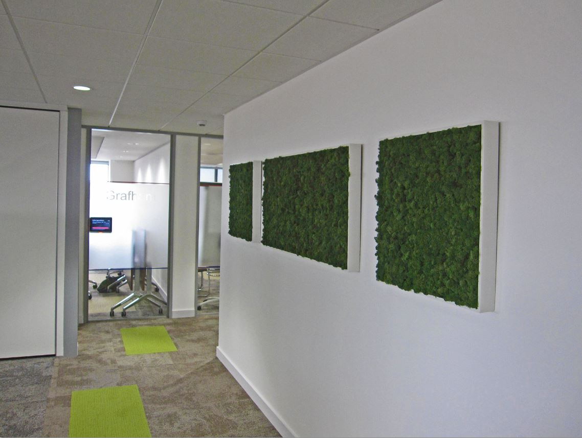 Moss pictures on the walls of birmingham office corridor