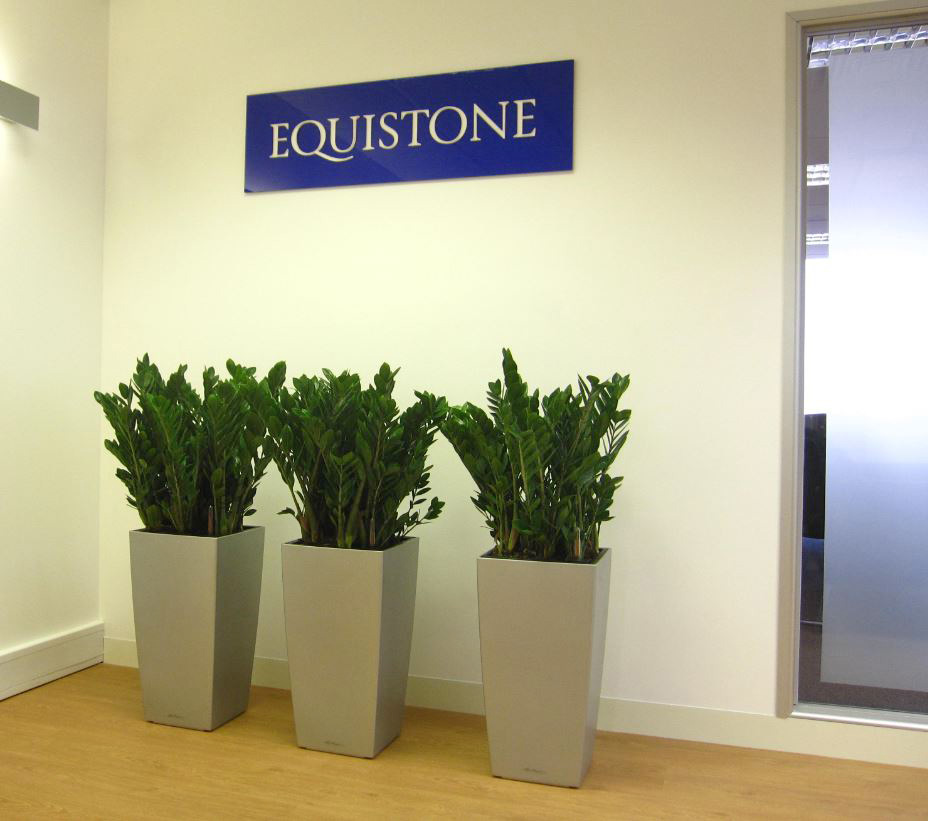 Green plants for midlands offices office landscapes for Office plants no natural light