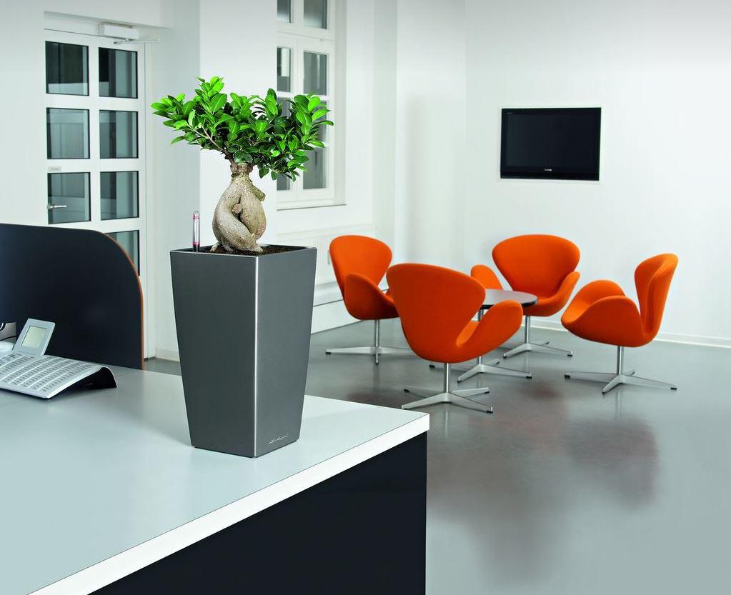 100 office desk plant desk plant air purifier furniture dec