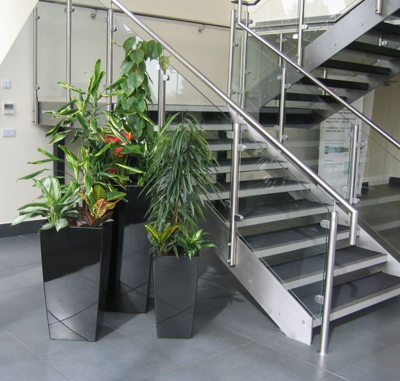 Plant displays at bottom of the stairs to first floor office meeting rooms