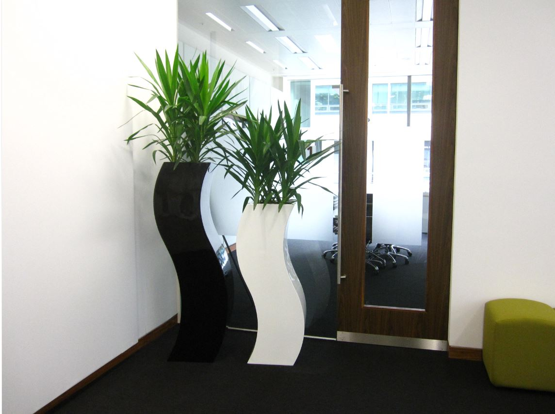 Plants for architects birmingham offices office landscapes - Tall office plants ...