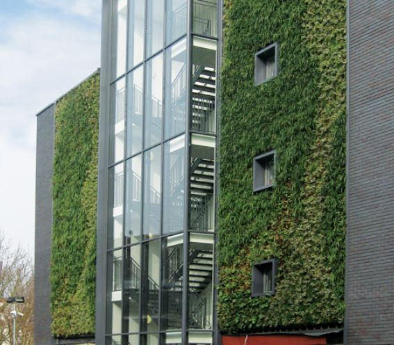 Green walls reducing pollution
