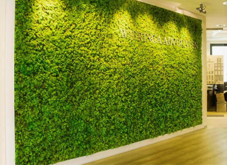 Large Green Moss wall in companies Main Reception