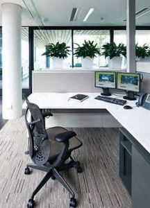 Scientific research shows indoor plants reduce stress.