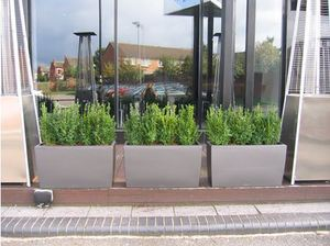 Balti Triangle Restaurant adds green planting to newly refurbished frontage.