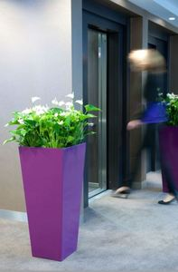 Plants for offices in the city of York