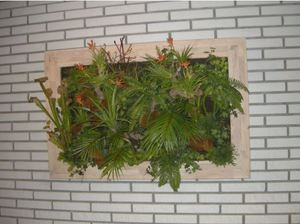 Artificial Plant Pictures