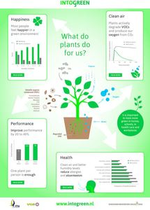 What do Plants do for Us?