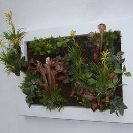 Rectangular Artificial Plant Picture