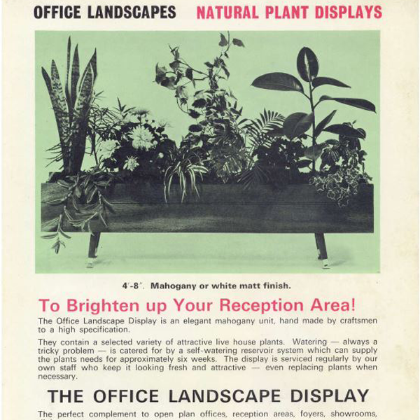 Our First Brochure - Office Landscapes Plant Displays