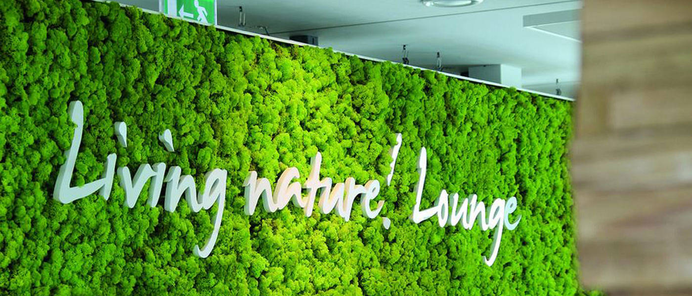 Moss Wall using real preserved moss with a company logo