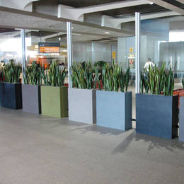 Tall Barrier Rectangular Displays