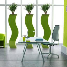 Tall Square Curvy Lime Yucca Planters