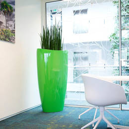 Tall Oval Shaped Contemporary Green Display