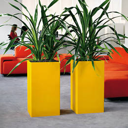 Tall Square Yellow Displays