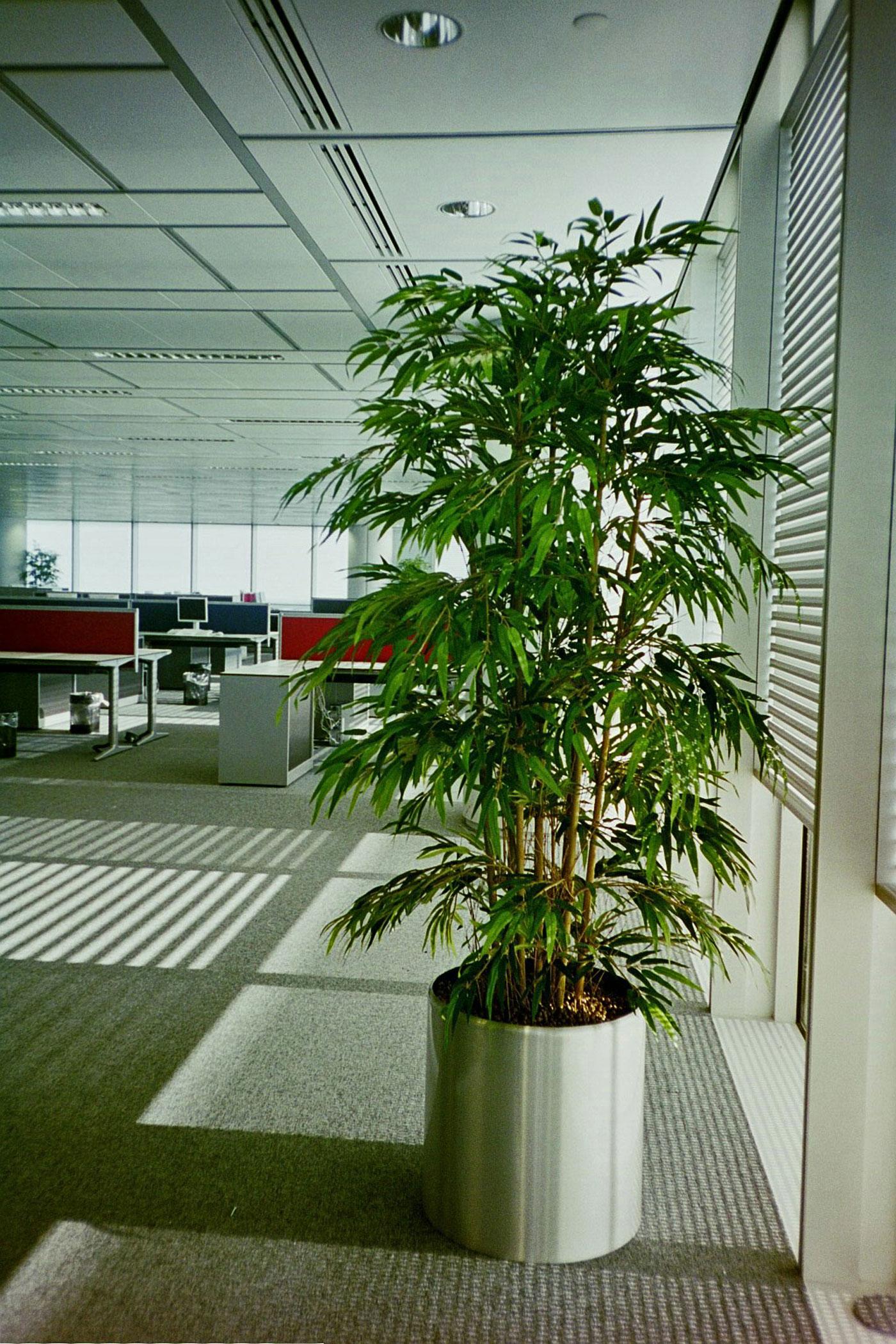 Attirant ... Artificial Bamboo Tree In A Circular Metal Planter ...