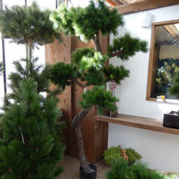 Artificial Pine Trees